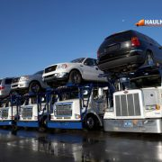 A fleet of shipping trucks loaded with cars to be transported